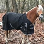 Harrys-Horse-Thor-0-Gram-Fleece-Black-284013780357-2
